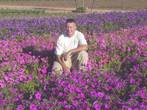Greg Grant in Laura Bush petunia selections