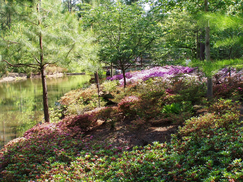 Callaway Gardens Pine Mtn Georgia